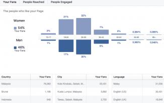 Cara Mengenali Audience Page FB Anda Melalui Insight Facebook